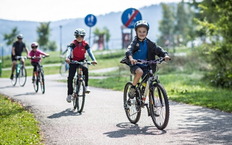Around Lipno by bike