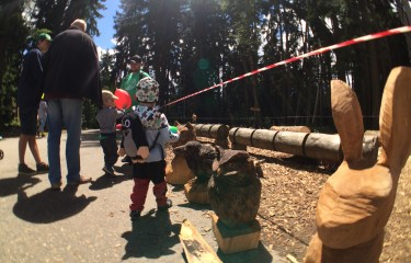 Festival of the wood